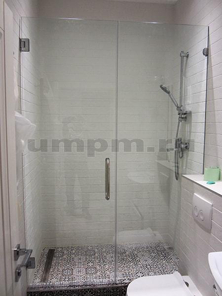 Стеклянная душевая перегородка с распашной дверью