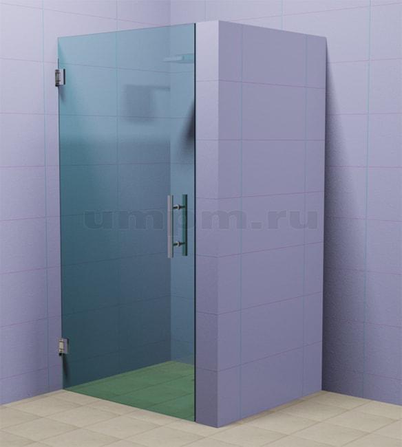 Стеклянная дверь для душевой